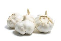 Garlic. On Isolated White Background Royalty Free Stock Photos