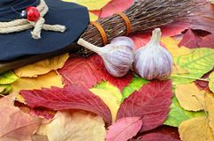 Garlic against the evil spirit on the autumn leaves Stock Image