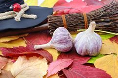 Garlic against the evil spirit on the autumn leaves Royalty Free Stock Images
