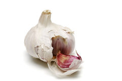 Garlic, alium sativum. The bulb of an onionlike plant (Allium sativum) of southern Europe having a bulb that breaks up into separable cloves with a strong Stock Photo