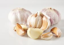 Garlic (Allium sativum) Royalty Free Stock Photos