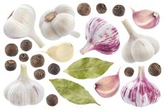 Garlic, allspice and bay leaf isolated on white background. Spices collection. Garlic, allspice and bay leaf isolated on white background with clipping path royalty free stock photo