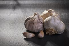 Garlic on ardesia royalty free stock photography