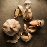 Garlic  with artistically scattered cloves around Stock Photography