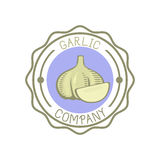 Garlic badge vector illustration. Stock Image