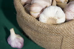 Garlic in a bag Stock Images