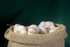 Garlic in a bag Stock Image