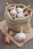 Garlic in bag on wooden background. Garlic in bag on old wooden background stock photos