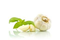 Garlic and basil Royalty Free Stock Image