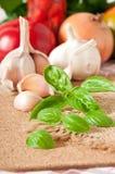 Garlic and basil Stock Images