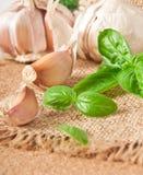 Garlic and basil Royalty Free Stock Photos