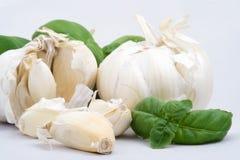 Garlic and basil, macro Royalty Free Stock Images