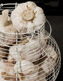 Garlic Basket royalty free stock photos