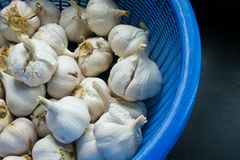 Garlic in basket Royalty Free Stock Photo