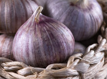 Garlic in a basket Stock Photography