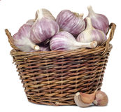 The garlic in the basket. Fresh garlic in wicker basket isolated on white background Stock Photos