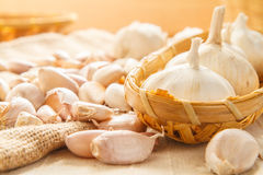 Garlic in basket Royalty Free Stock Image