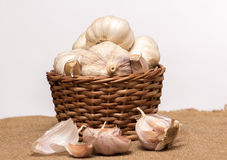 Garlic on basket. Some garlic heads on a basket container Stock Image