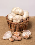 Garlic on basket Stock Images