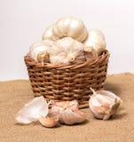 Garlic on basket Stock Images