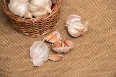 Garlic on basket. Some garlic heads and a basket container on plain background Royalty Free Stock Photography