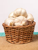 Garlic on basket. Some garlic heads and a basket container on plain background Royalty Free Stock Images