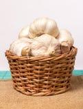 Garlic on basket Royalty Free Stock Images