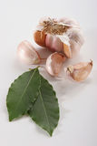 Garlic and Bay laurel. A half garlic with three cloves, and two leafs of bay laurel Stock Photo