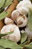 Garlic and bay leaf Stock Image