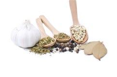 Garlic, bay leaf, blackpepper, whitepepper, thyme, clove, basil leaf Stock Images