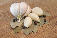 Garlic with the bay leaf and spices on a cutting board Stock Photos