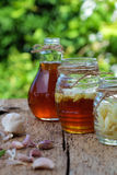 Garlic in bee honey, remedy skin care. Healthy food from nature herbal, garlic soak in bee honey, a herb remedy for skin care, healthcare, three jar on green Royalty Free Stock Photo