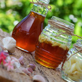 Garlic in bee honey, remedy skin care. Healthy food from nature herbal, garlic soak in bee honey, a herb remedy for skin care, healthcare, three jar on green Royalty Free Stock Image