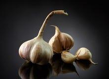 Garlic on black background Royalty Free Stock Photo