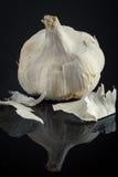 Garlic on black background Stock Photos