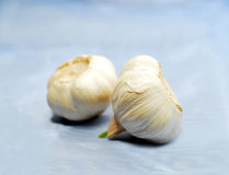 Garlic on blue Royalty Free Stock Photos
