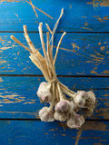 Garlic on blue wooden table Stock Photography