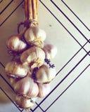 Garlic braid with lavender royalty free stock photos