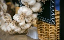 Garlic buds Royalty Free Stock Image