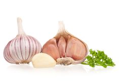 Garlic bulb Stock Images