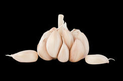Garlic bulb and cloves. Garlic isolated on white background Royalty Free Stock Photography