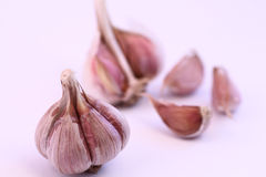 Garlic bulb and cloves Stock Photo