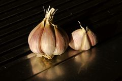 Garlic bulb and cloves Stock Images