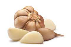 Garlic bulb and cloves, paths Stock Image