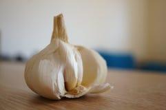 Garlic bulb Royalty Free Stock Photo