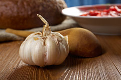 Garlic bulb  front  soup Stock Image