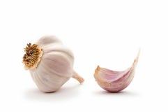 Garlic bulb and garlic clove Royalty Free Stock Photos