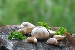 Garlic bulb and garlic cloves Royalty Free Stock Photo