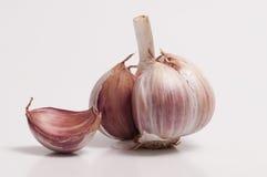 Garlic Bulb and a Individual Clove Royalty Free Stock Photography