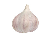 Garlic bulb.Isolated. Royalty Free Stock Image